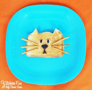 Grilled Cheese Cat with a $50 Kroger Giveaway! #CountryCrock