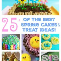 The BEST Spring Cakes & Treat Ideas for Easter!