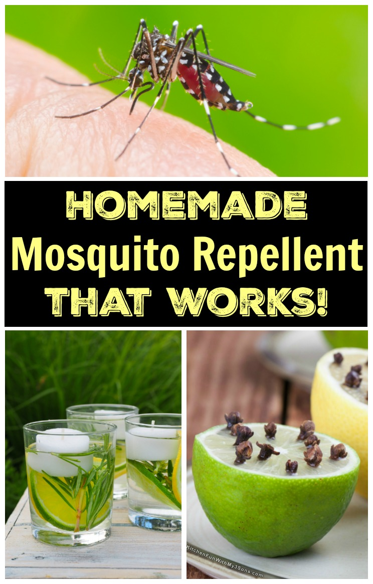 Homemade Mosquito Repellent that works!