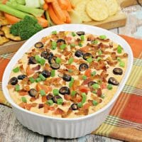 This Bacon Cheddar Dip is your new go-to dip you will be making all the time! Warm cream cheese with salsa, bacon and spices is a delicious combination.