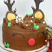 A Reindeer Cake with bright red and green layers is one of the most fun and festive Christmas cakes ever!