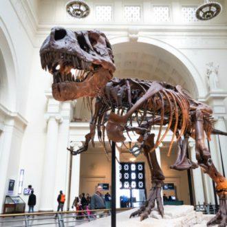 Famous Museum Virtual Tours
