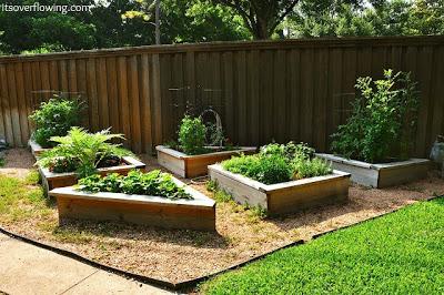 How to Build a Vegetable Garden