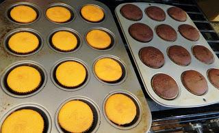 Cupcakes Vanilla and Chocolate