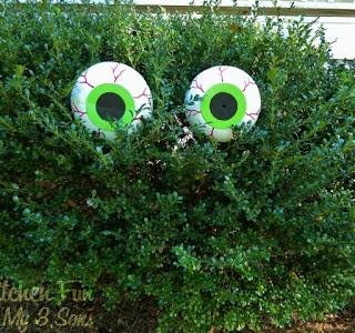 EyeCraft1W