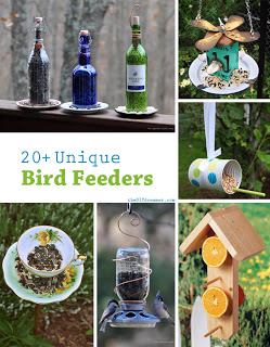 20+ Ways to Make Bird Feeders
