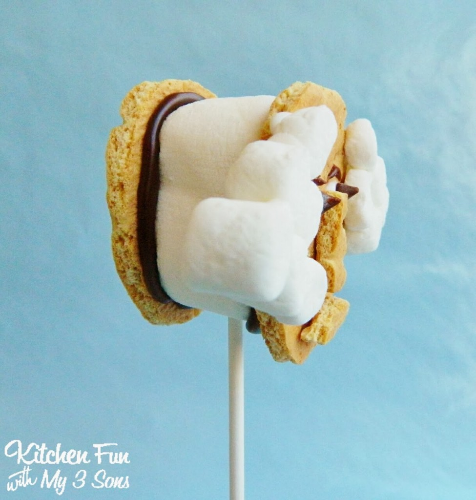 George Washington S'mores Cookie Pops for Presidents Day Side View