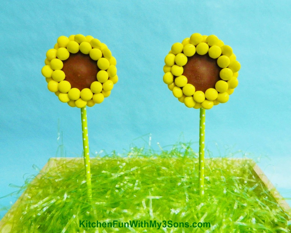 Reese's Peanut Butter Cup Sunflower Pops Close Up