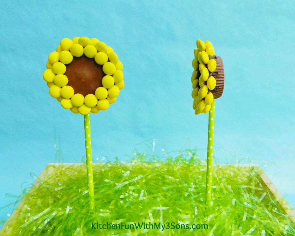 Reese's Peanut Butter Cup Sunflower Pops Side View