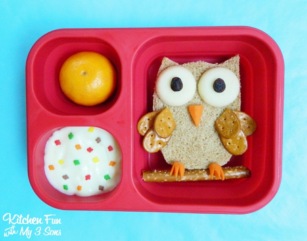 fun Owl lunch up for school