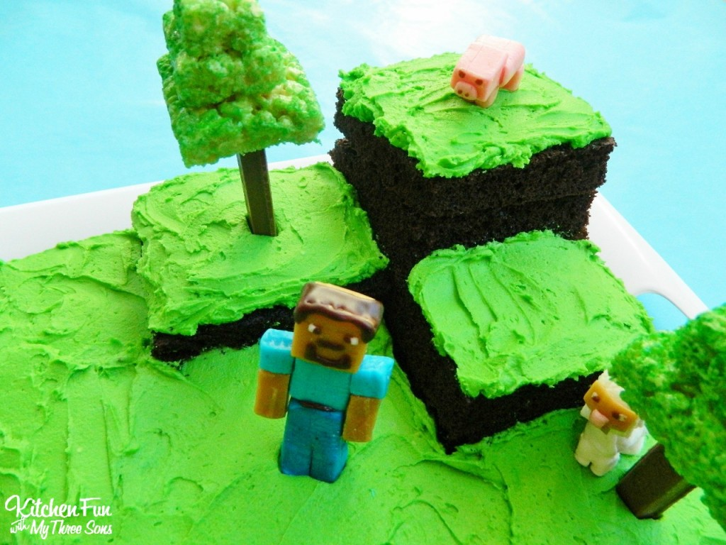 Easy Minecraft Birthday Party Cake