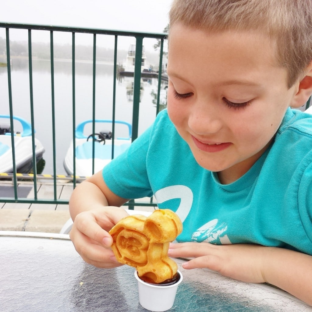 My boys loved their Mickey Mouse Waffler Dippers for breakfast...