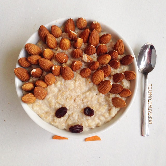 Healthy Hedgehog Oatmeal