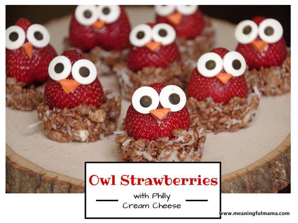 Owl Fruit Nest Snack
