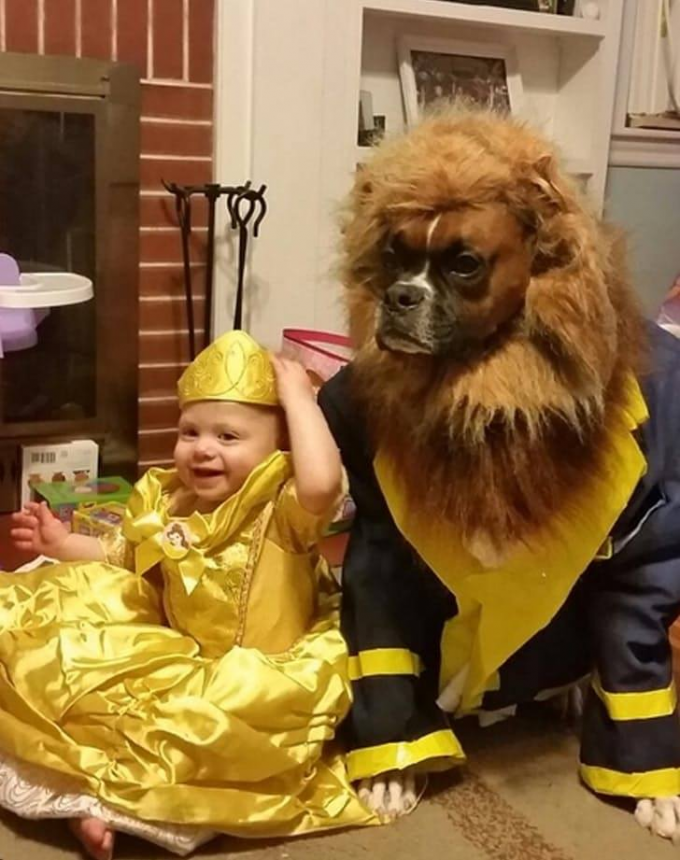 Beauty and the Beast Costumes for Halloween!