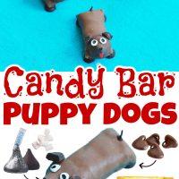 Candy Bar Dog Treats