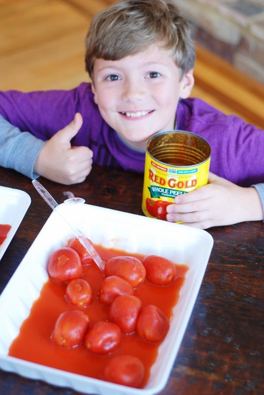 Red Gold Tomato Challenge from KitchenFunWithMy3Sons.com