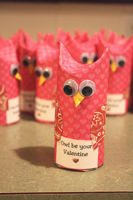Valentine's Day Toilet Roll Owl Craft
