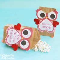 Valentine Owl Paper Treat Bag with a Free Printable...a fun craft the kids can make & give to their friends on Valentine's Day from KitchenFunWithMy3Sons.com