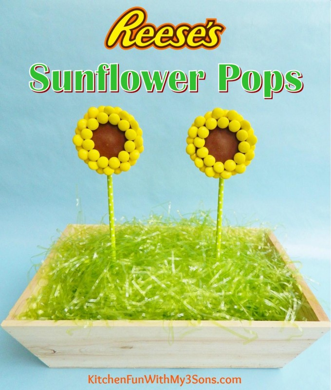 Reese's Sunflower Pops from KitchenFunWithMy3Sons.com