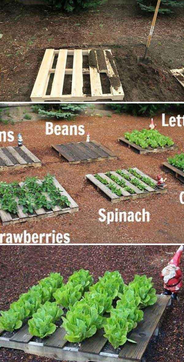 Pallet Vegetable Garden...these are the BEST DIY Garden & Yard ideas!