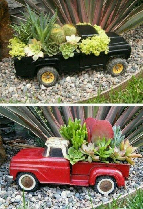 Succulent Toy Trucks
