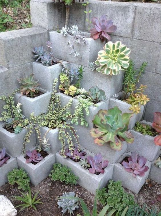 cinder block garden plants - Diy Garden Ideas