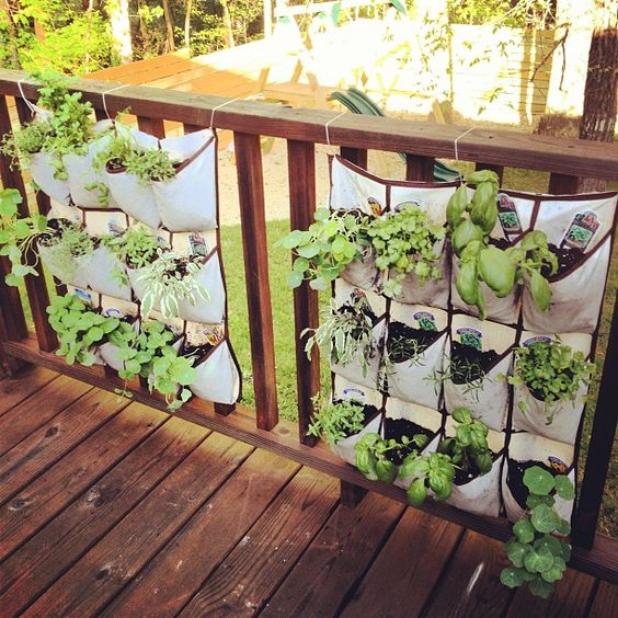 Hanging Shoe Organizer turned into a Herb Garden...great idea!