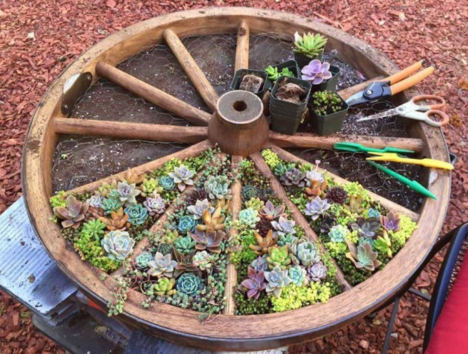 Wagon Wheel Garden...such a neat idea for planting flowers!
