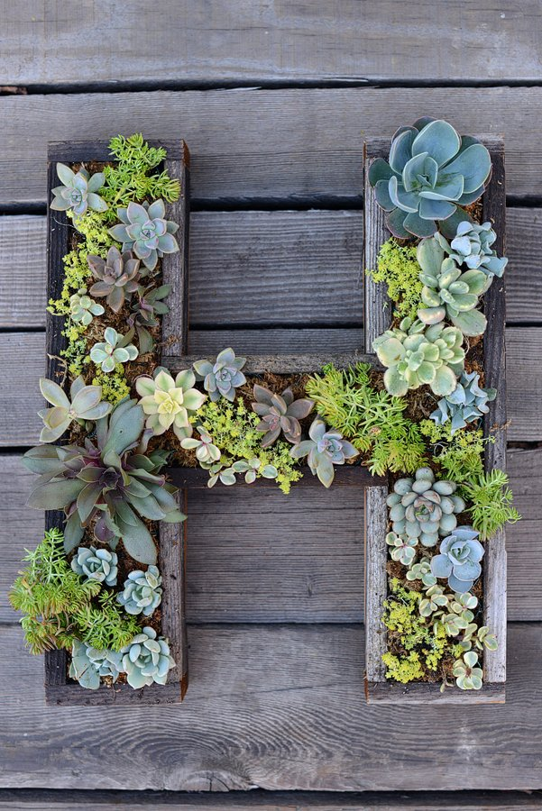 The best garden ideas and diy yard projects kitchen fun with my 3 sons - Wall mounted planters outdoor ...