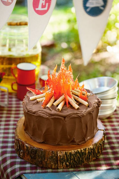 Easy Camping Cake...these are the BEST Cake Ideas!