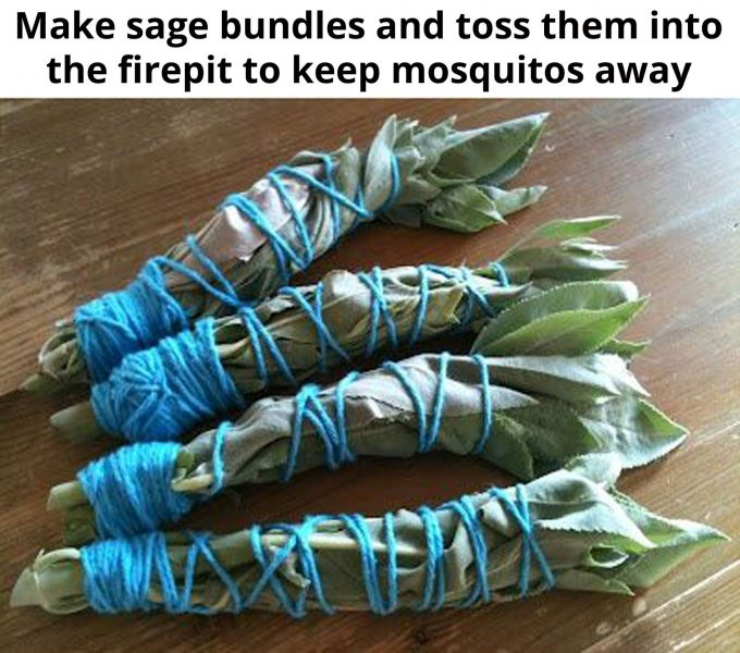 Sage Bundles - these are the BEST Camping Ideas!