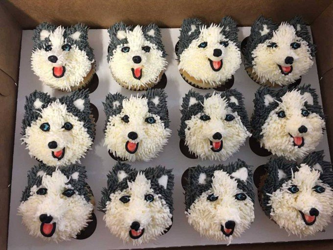 Husky Dog Cupcakes...these are the Cutest Cupcake Ideas!