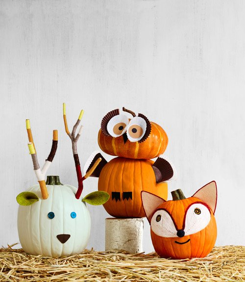50 of the best pumpkin decorating ideas kitchen fun. Black Bedroom Furniture Sets. Home Design Ideas