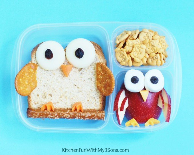 Owl Bento Lunch for Kids