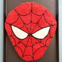 Spider-Man Cookie Cake - Universal Orlando!