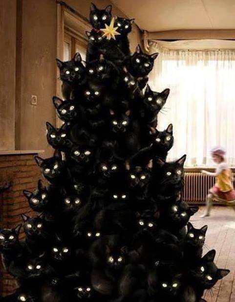Crazy Cat Lady Tree...these are the most Creative Christmas Trees!