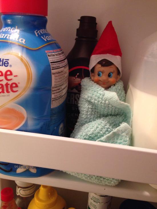 Elf in the Refrigerator