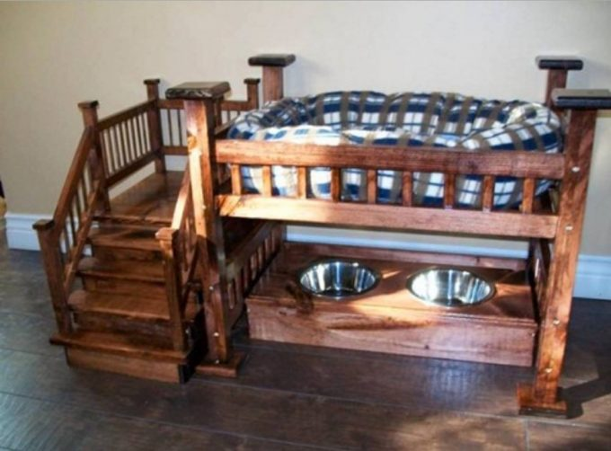 Awesome Dog Bunk Bed with Feeding Station so cute Find the BEST Bunk
