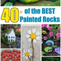 Over 40 of the BEST Rock Painting Ideas!