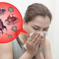 How to Get Rid of the Dust Mites That Are Making Your Family Sick