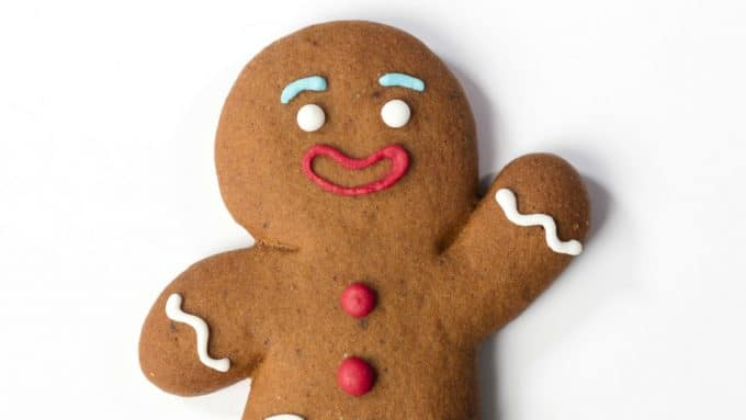 Gingerbread Person - Gender Neutral