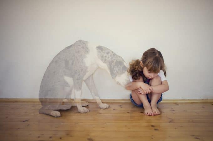 The Agony of Losing a Pet Is Worse Than People Know