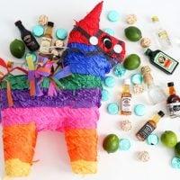 NIPYATAS: Booze Pinatas for Adult-Only Parties