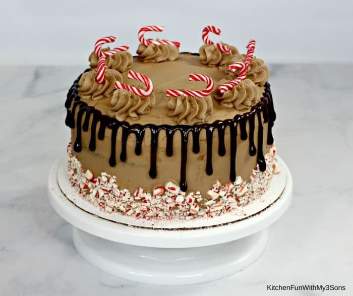 Decorated chocolate candy cane cake on a white cake stand