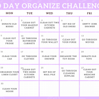 30 Day Home Organizing Challenge