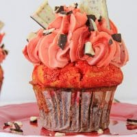 Decorated peppermint bark brownie cupcake on red plate