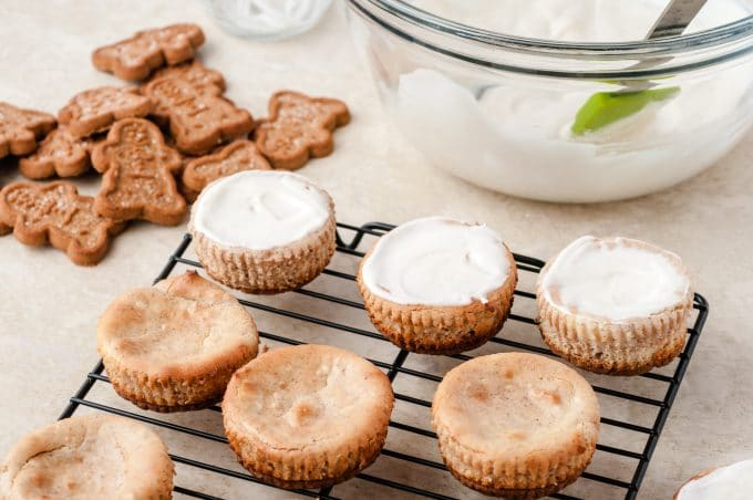 Mini Cheesecakes with Gingerbread Cookies