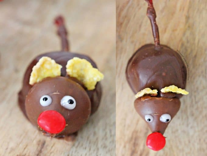 Chocolate Dipped Cherries that look like Mice