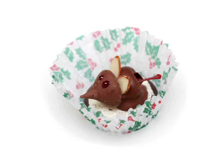 Chocolate Mouse in a Cupcake Liner